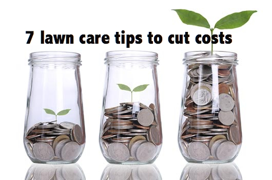 7 cheap way to maintain your lawn and garden