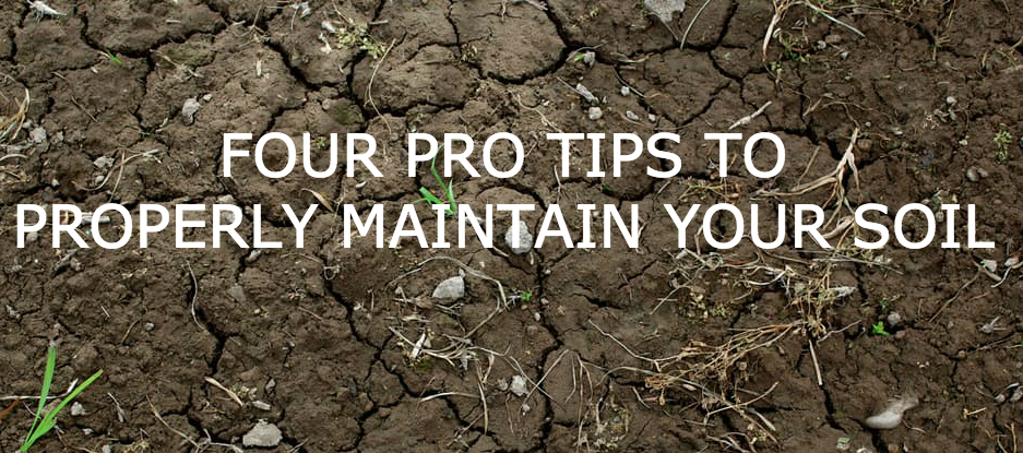 FOUR PRO TIPS TO PROPERLY MAINTAIN YOUR SOIL