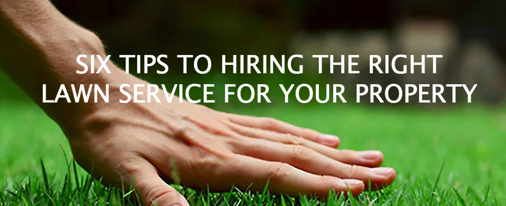 SIX TIPS TO HIRING THE RIGHT LAWN SERVICE FOR YOUR PROPERTY Presidential Properties