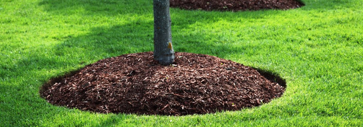 How much mulch will I need?